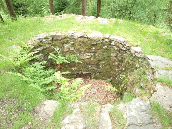 Grizedale, UK: Round structure