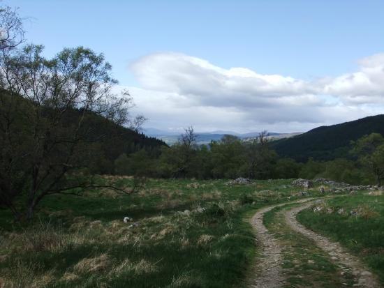 Dunkeld, UK: A lovely woodland track with great views