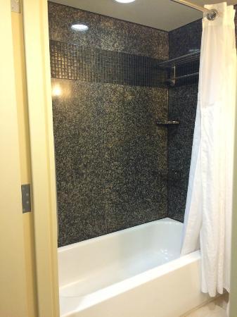 Holiday Inn Daytona Beach LPGA Boulevard: Tub shower