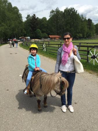 Ponyhof Pflaumdorf