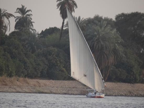 Gerda's Garden: nicht weit vom Nil