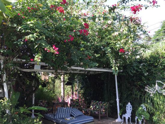 Mama Ruisa: beautiful flowers by the pool