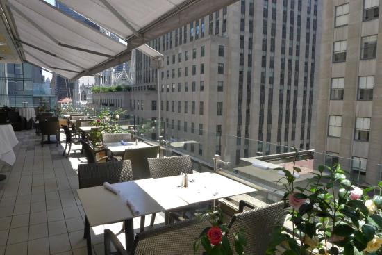 The terrace picture of the terrace club new york city for Terrace new york