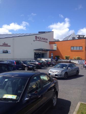 photo1.jpg - Bilde av Galway Atlantaquaria i Galway - TripAdvisor
