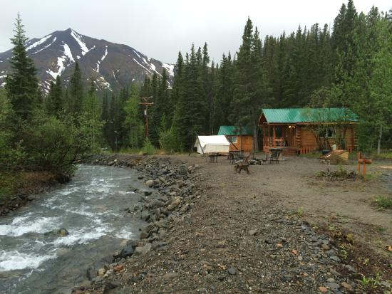 Picture of denali mountain morning hostel and for Denali national park cabins