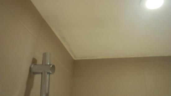 schimmel in der dusche fotograf a de radisson blu eu. Black Bedroom Furniture Sets. Home Design Ideas