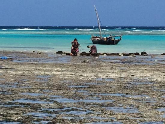 Pemba Island: Beach views on the Northern tip of Pemba