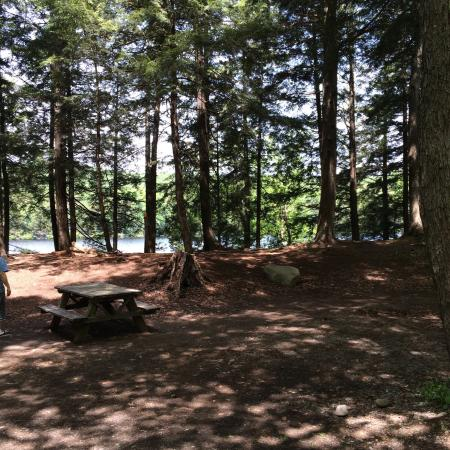 Nick's Lake Campground: photo2.jpg