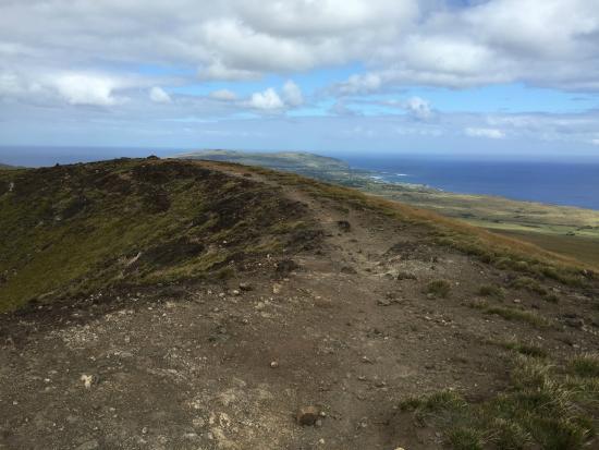 Maunga Terevaka : Cratera 1, 480 metros.