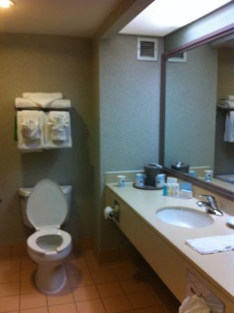 Hampton Inn Philadelphia King of Prussia: bathroom
