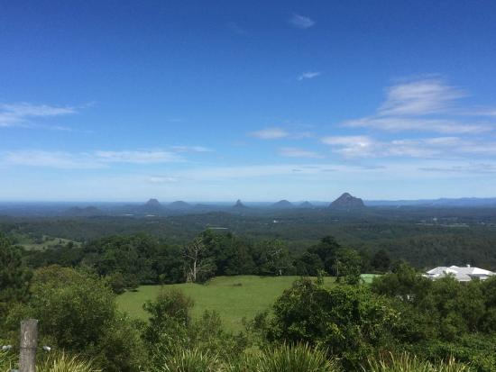 Maleny Lodge: Maleny Botanical Gardens View