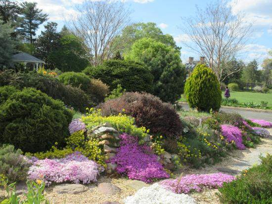 Spring Gardens Classy Green Spring Gardens Alexandria Va Top Tips Before You Go 2017