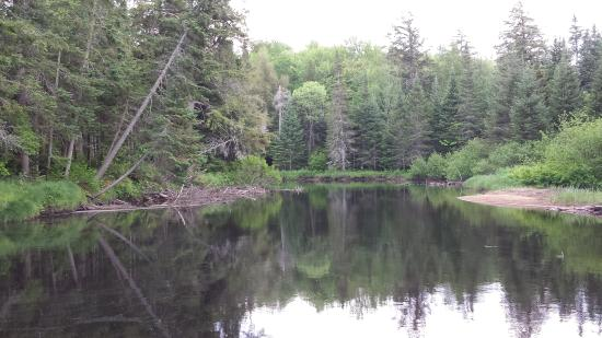 Oswegatchie River: 2nd view of River