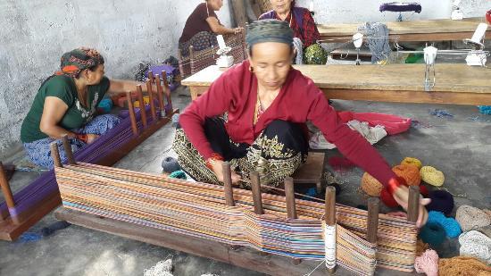 Women's Skills Development Organization