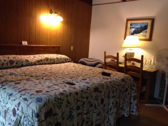 Totem Trail Motel: We had fresh rosebuds in our room, table service complete with candle and matches, wine and tea