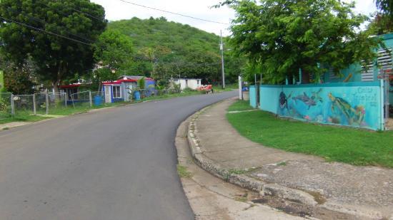 Casita Tropical: hotel