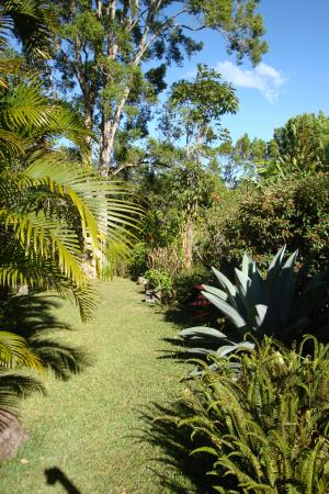 jardin encantado park agave garden