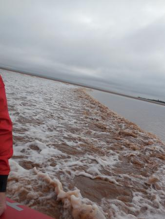 Shubenacadie River Runners: The tidal bore beginning its upriver journey
