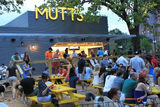 Restaurant Bar And Patio Picture Of Mutts Canine