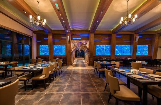 Aquarium Restaurant Yas Marina Dine In Style At