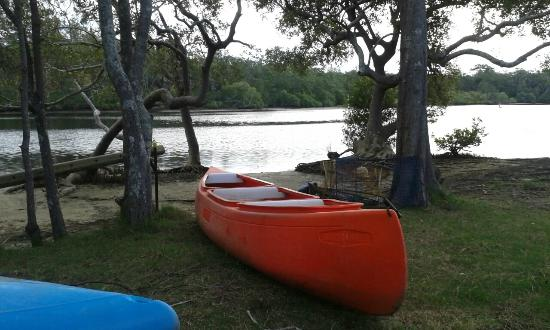 Canoes are free to use