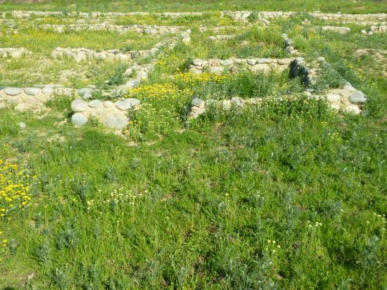 Talgar, كازاخستان: Городище Талгар