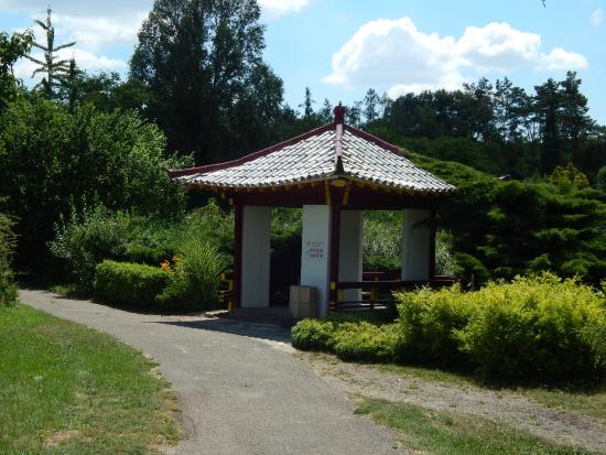 Arboretum Mlynany SAV
