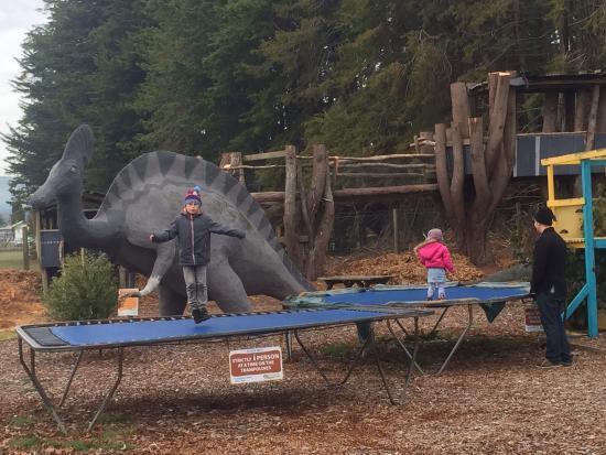 All Seasons Holiday Park Rotorua: Kids play area