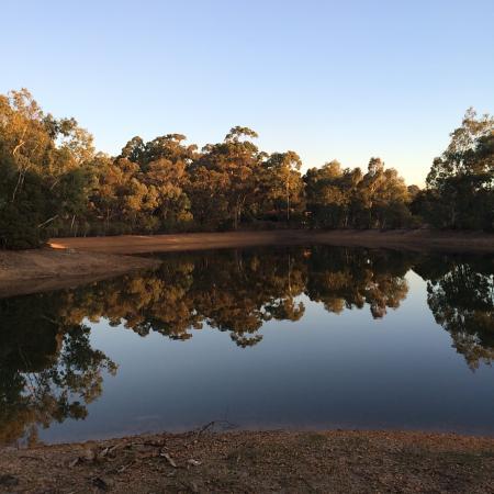 Gidgegannup, Austrália: Nearby lake