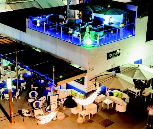 Kactus Café: Panoramica