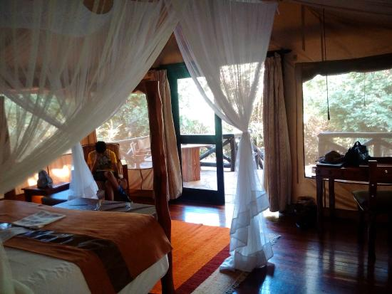 Image result for sarova mara camp pictures
