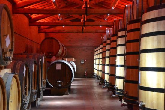 Distillerie Berta: cantina