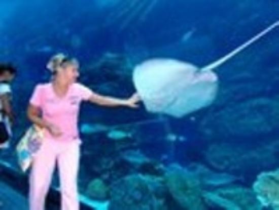 Corfu Aquarium: внутри