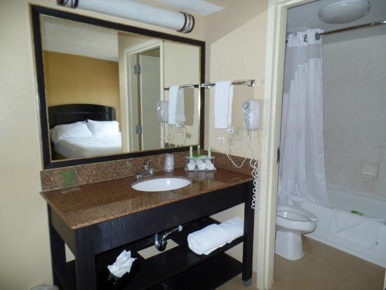 Holiday Inn Express Hotel & Suites Midtown: Sink (Bathroom)