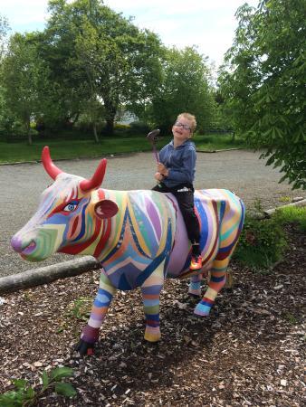 Dalton Pottery Art Cafe: Colourful cow