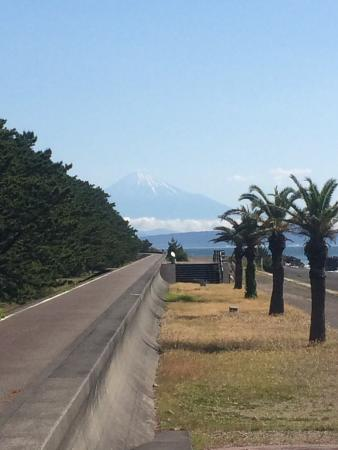 Discovery Park: 富士山