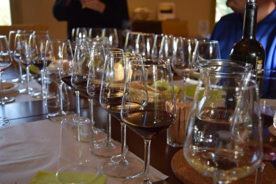 Azienda Agricola Leda' d'Ittiri: Wine Tasting