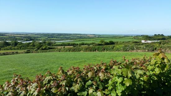 Premier Inn St. Austell Hotel: Taken a couple of miles out, but how beautiful is Cornwall?