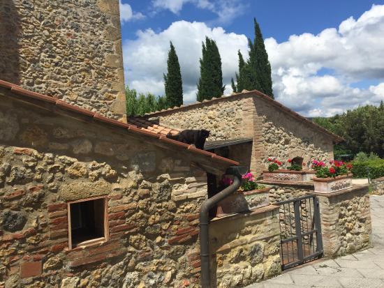 Villa Dini : Un luogo dove rilassarsi!