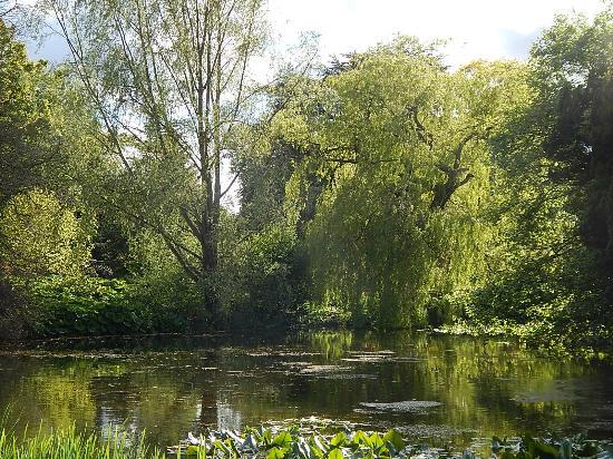 Jardin botanico edimburgo fotograf a de royal botanic for Jardin botanico edimburgo