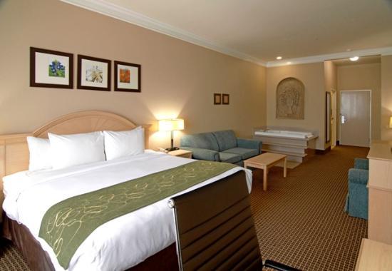 Comfort Suites Humble Houston North: King Suite