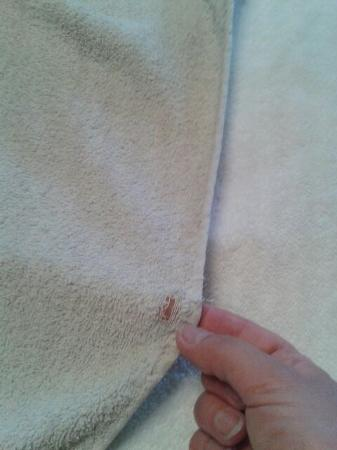 Beverley Guesthouse: Grey, frayed, stained and holey towels provided