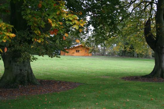Coolanowle Country House: Log house across the lawn