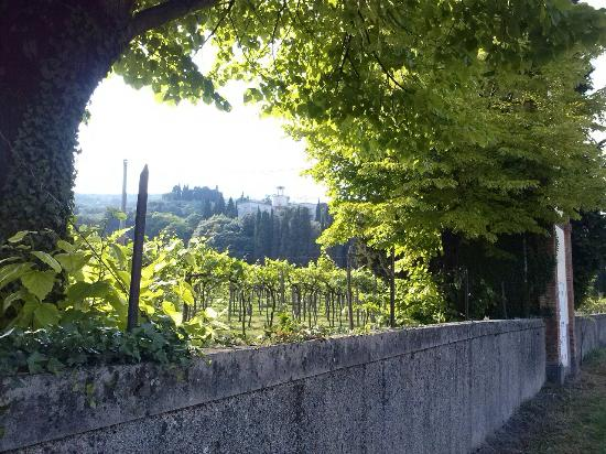 San Martino Buon Albergo, Italy: Vista dalla strada, via Mezzavilla
