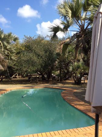 Bonamanzi Game Reserve: The pool