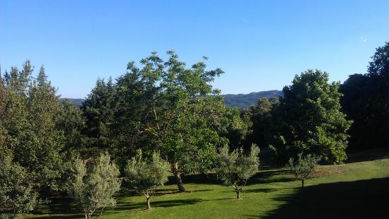 Le Mas de la Lombarde: Parc du mas de  la lombarde