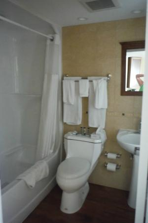 Chateau Louis Hotel & Conference Centre: Bathroom