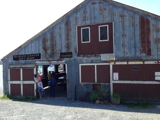Ludvig's Bistro: Shed next to Sitka Sound Science Center