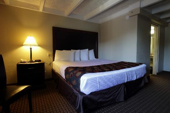 Days Inn Bloomington West: King Bed Room