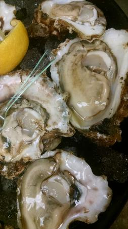 Pelican Reef Restaurant: Freshly shucked raw oysters! Exquisite